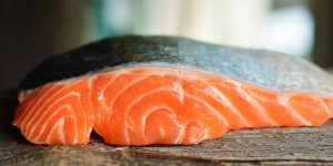salmon-3139390__480-300x150